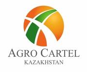 Сельскозозяйственная продукция на экспорт из Казахстана